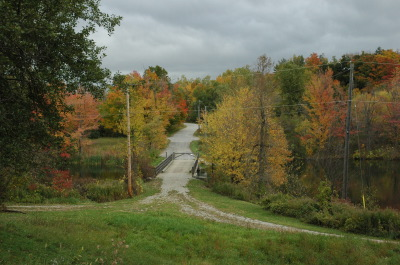 All, Fall, Road, Trees, Canada