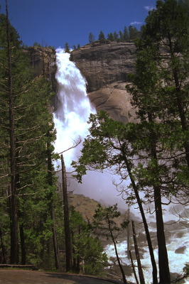 All, USA,California,Water Fall, Trees, Yosemite National Park